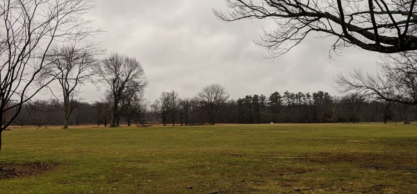 Waveny trail run on 16 Dec 2018 on overcast, rainy, freezing day