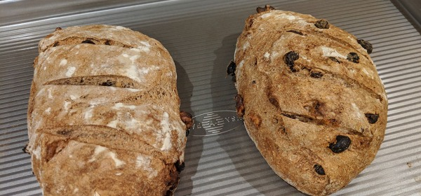 Home baked Raisin Walnut Bread with mix of white, whole wheat and rye flours