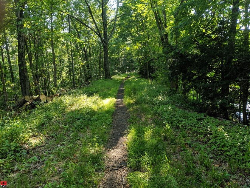 Single-Track Trail on Larkin State Park Trail