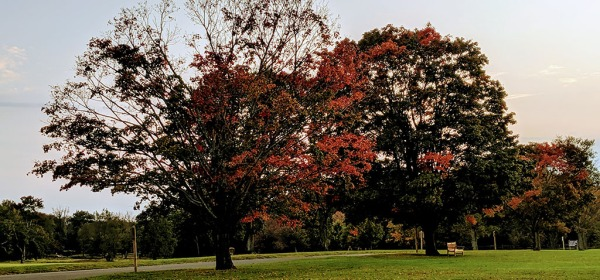 Waveny Park, New Canaan, CT in fall 2019
